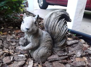 Not the actual squirrel from this awesome blog posting.