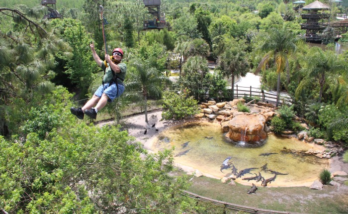 How Much Fun are Zip Lines,Anyway?
