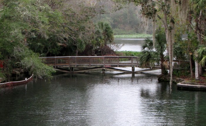 Fave Fotos: Wekiva Springs State Park is So Beautiful