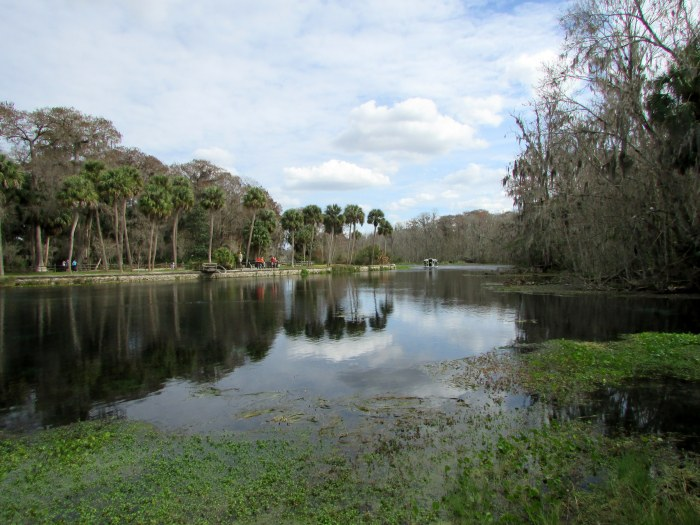 You Do Have to See Silver Springs State Park to Get It!