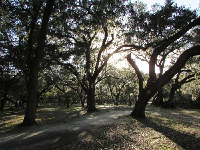 Moss Park in Southern Orange County is a Lovely Spot