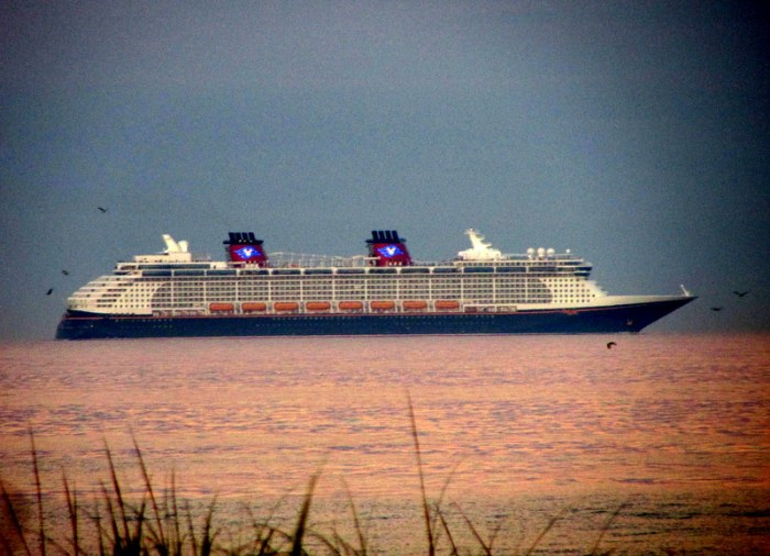 Bulldog Is NOT On a Disney Cruise Line Ship, but HeJust…