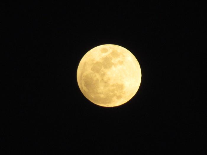 Happy Moon Day 2018,Folks!