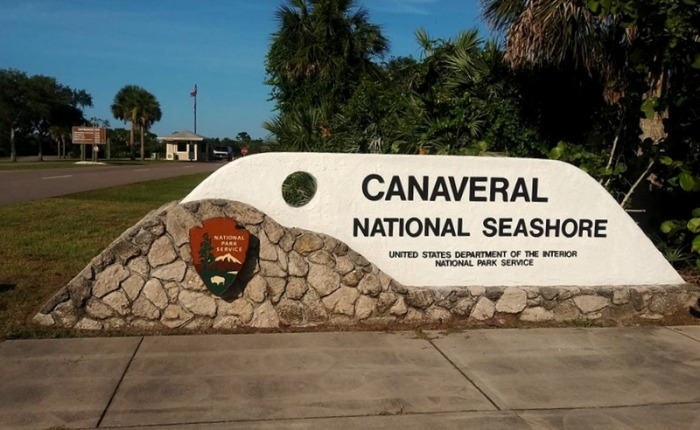 Back to Canaveral National Seashore Yesterday
