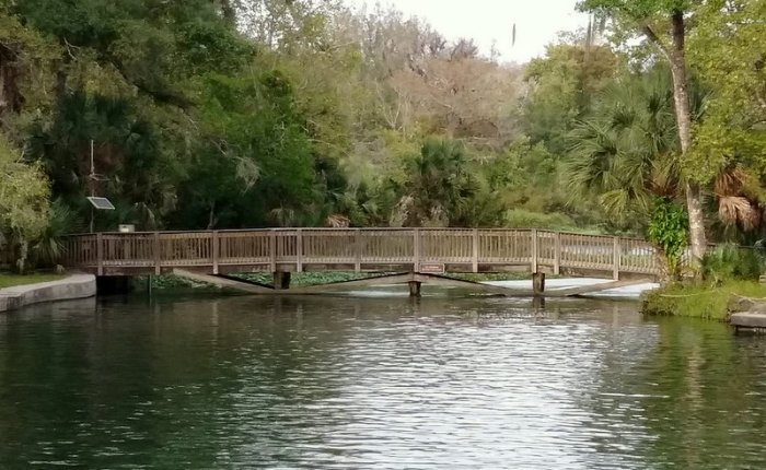 Wekiwa Springs in November
